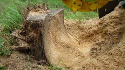 Fresadora para troncos con mando hidráulico F 500H/38